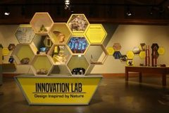 Booking (trips, etc.): Exhibit Closing: Innovation Lab: Design Inspired by Nature