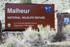 Booking (trips, etc.): Malheur Reflections, Two Years Later