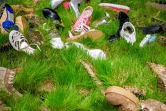 Free: Matthew Boulay: Combat Grass