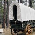 Booking (trips, etc.): Survive the Oregon Trail!