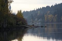 Free: Sellwood Riverfront Park