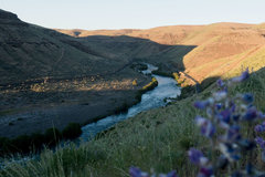 Free: Deschutes River Guided Hike