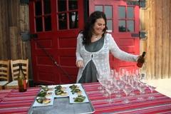 Varies/Learn More: Memorial Day Weekend BBQ + Wine Pairing @ AniChe Cellars!