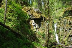 Free: Rediscovered Ki-a-Kuts Falls between PDX + the Coast