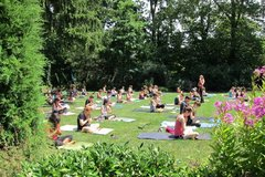 Donation: Outdoor Forest Yoga at Hoyt Arboretum