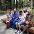 Free: Senior Day: Free to Visit the High Desert Museum!