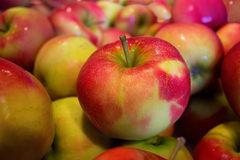 Free: Reverend Nat's Hard Cider Apple Market