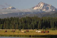 Varies/Learn More: Black Butte Ranch + Winter Fun in Central Oregon