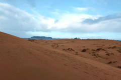 Varies/Learn More: John Dellenback Trail: Spectacular Dunes + More