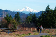 Free: Powell Butte Nature Park in SE Portland