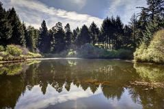 Varies/Learn More: Coastal Forest Bliss at the Salishan Resort