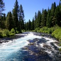 Selling: Metolius River Plein Air Landscape Drawing Field Trip