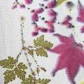 Booking (trips, stays, etc.): Botanically EcoDye Silk Scarves