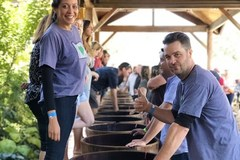 Selling: 29th Annual Grape Stomp Championship & Harvest Celebration