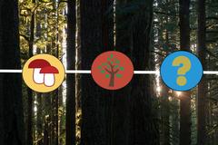 Donation: Ecology Trivia Night