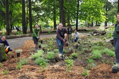 Free: Plant the Columbia Park Nature Patch