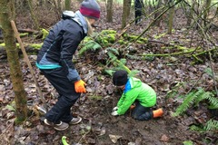 Free: Stewardship Saturday: Columbia Children's Arboretum