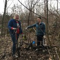 Free: Stewardship Saturday: Johnson Lake
