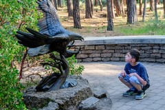 Free: Museum and Me: High Desert Museum