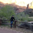 Zion fence