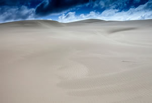 Oregon Dunes National Scenic Area